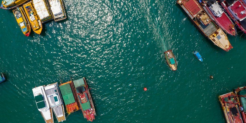 jasa undername ekspor ikan